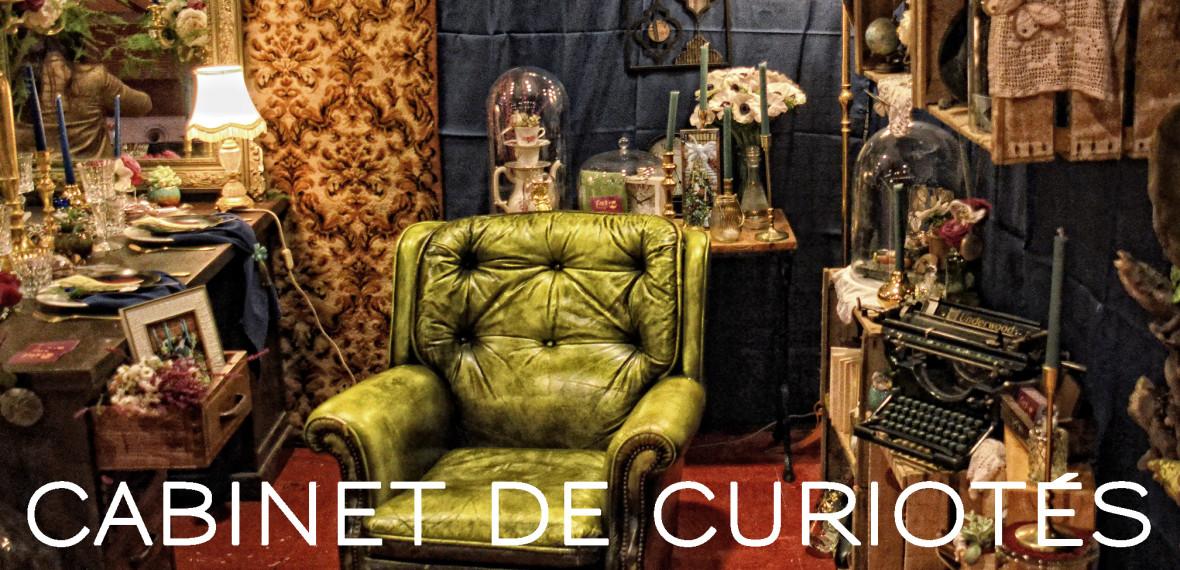 Cabinet de curiosités - Fabienne Dimanov Paris